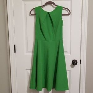 *LIKE NEW* Green Skater Dress (2)